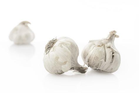 garlic-softneck
